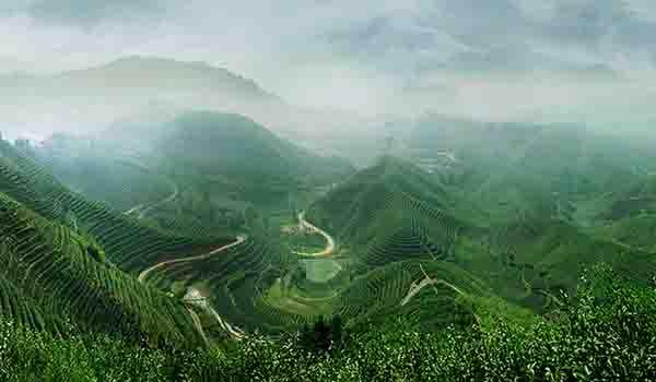 临沂茶山风景区规划