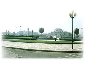 蓬莱经济总量_蓬莱松图片
