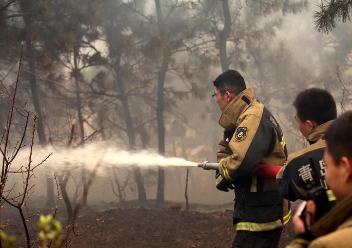 青島嶗山區森林火災明火已全部撲滅