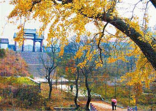 清泉(quan)寺