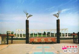 鳳凰苑fang)┬悼ke)技園