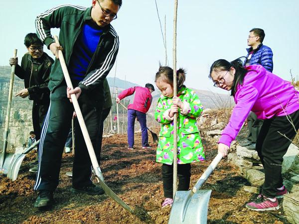 淄博市博山區:播撒綠色希望 共建綠色家園