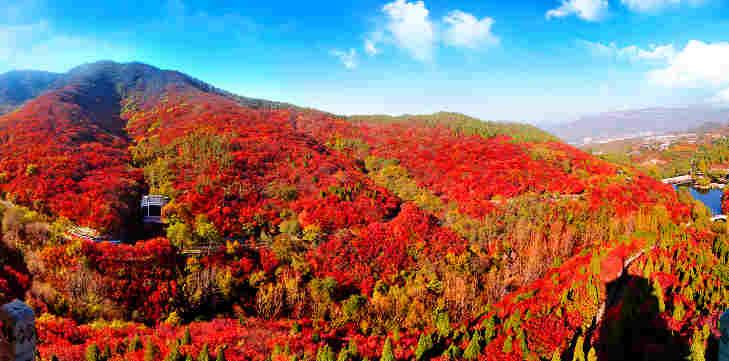 济南红叶谷景区:第十七届红叶节即将开幕