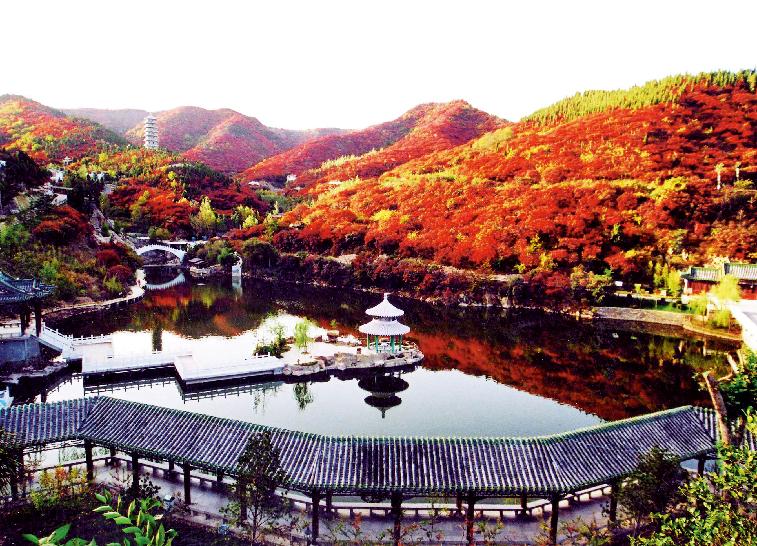 济南红叶谷景区红叶迎来第一个阶段