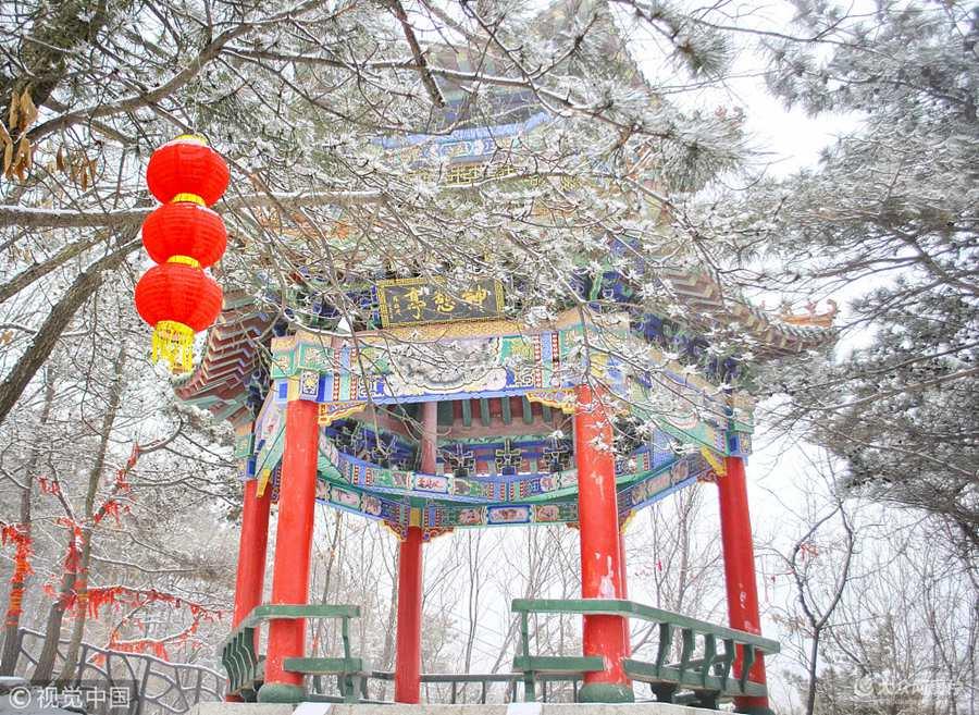山东临沂现雨雪雾凇景观