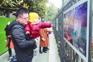 滕州:摄影展展示发展变化 提升城市形象