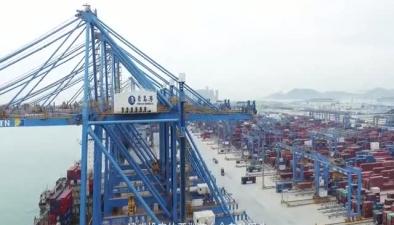 """海洋科技看山东:青岛港走向""""智能路"""""""