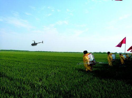 济南举行应急演练:无人机低空洒药
