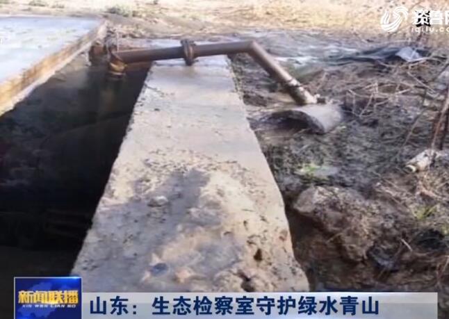 视频|山东:生态检察室守护绿水青山
