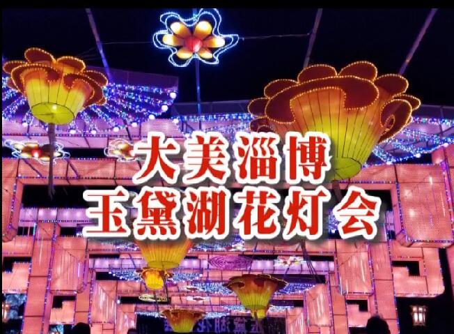 《玉黛湖花灯》王珏