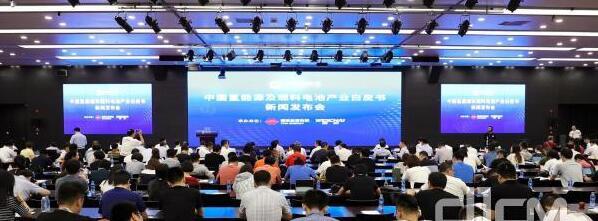 我国首部氢能源及燃料电池产业白皮书问世