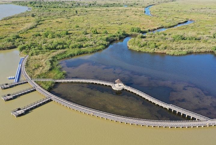 山東東營:航拍黃河口濕地初秋景色如畫作