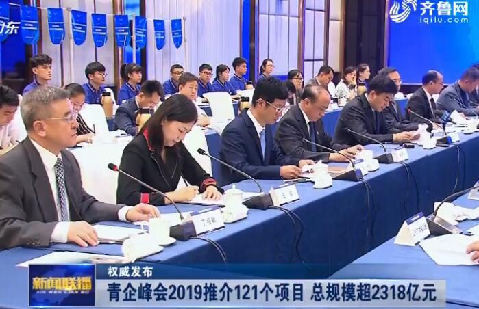 青企峰会2019推介121个项目 总规模超2318亿元