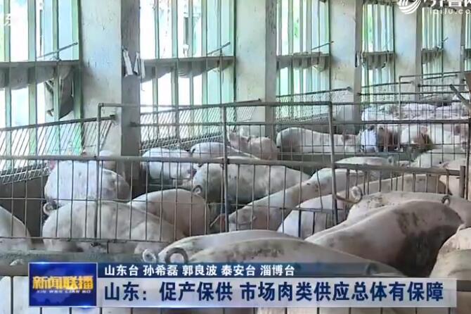视频|山东:促产保供 市场肉类供应总体有保障