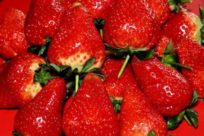 沂源县中庄镇南庄村草莓