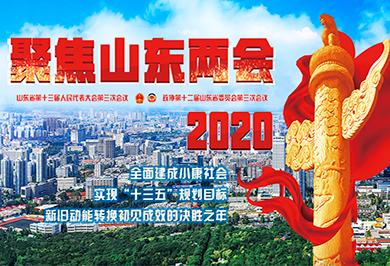 2020山(shan)東兩會