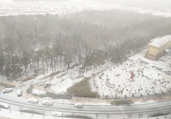 煙台(tai)出現zhi)da)範(fan)圍降雪天氣 最大(da)降水出現在萊州(zhou)