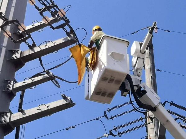 萊蕪(wu)供電首次(ci)在配網改造中實施大範圍帶電作業(ye)