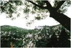 金牛山風景區