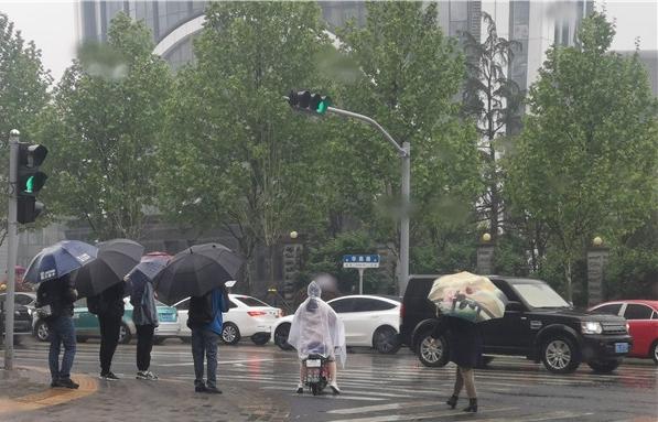 帶傘添衣!濟南大部迎春雨氣溫開啟震蕩模式